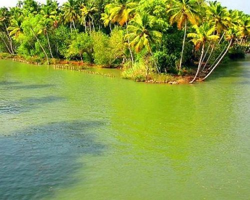 poovar-island-backwaters-1528523784